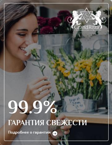 Гарантия качества Владимир